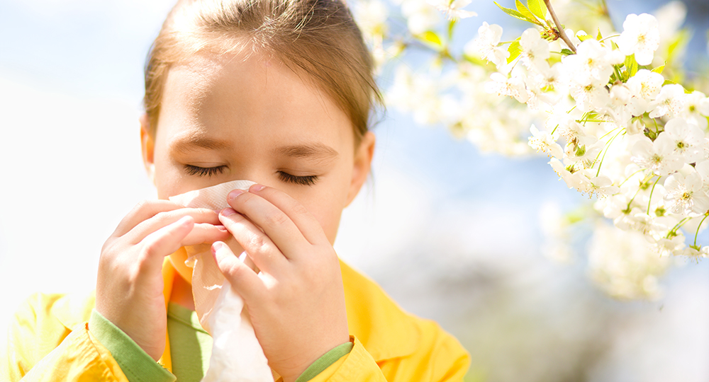 Gainesville Allergy & Sinus Center